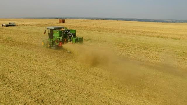 aerial view of combine harvesting wheat,xi'an,china. - トラクター点の映像素材/bロール
