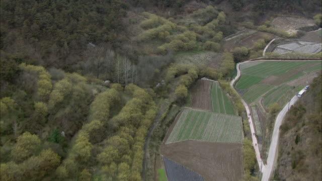 vídeos de stock e filmes b-roll de aerial view of cornus officinalis field at sansuyu village - cornus