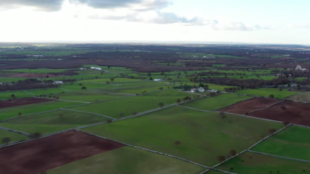 aerial view of country scenes of alberobello - taranto province stock videos & royalty-free footage