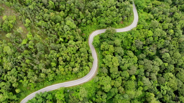 Luftaufnahme der Landschaft Straße, die durch den grünen Wald und Berg mit dem Auto auf der Straße.