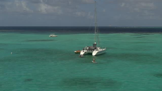 aerial view of couple paddleboarding toward catamaran in ocean / tobago cays, st. vincent and the grenadines - 双胴船点の映像素材/bロール