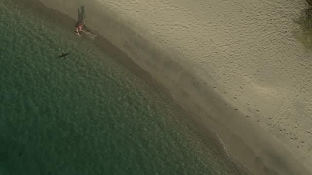 aerial view of couple running on beach then splashing in ocean waves / anse la roche bay, carriacou, grenada - badbyxor bildbanksvideor och videomaterial från bakom kulisserna