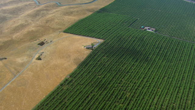 aerial view of crop fields in central valley - canal stock videos & royalty-free footage