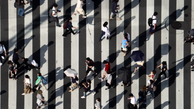 aerial view of crossroad - pedestrian crossing stock videos & royalty-free footage