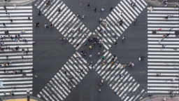 Aerial View of Crowd People  pedestrians and Cars Crossing Intersection Road in Ginza, Tokyo, Japan