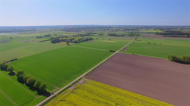 aerial view of cultivated land and rapeseed field near by damnatz in in the district lüchow-dannenberg in lower saxony - germany - patchwork landscape stock videos and b-roll footage