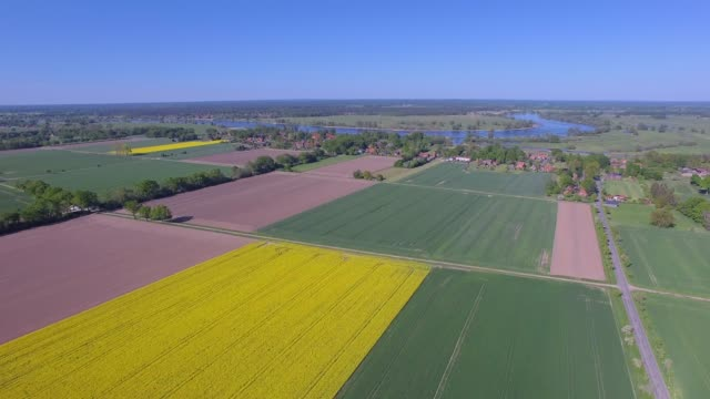 aerial view of cultivated land with rapeseed field and river elbe near by damnatz in in the district lüchow-dannenberg in lower saxony - germany - rapeseed oil stock videos and b-roll footage