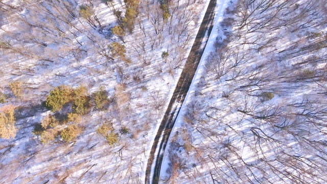 vidéos et rushes de vue aérienne du chemin courbé sur une neige couvert côté montagne - neige fraîche