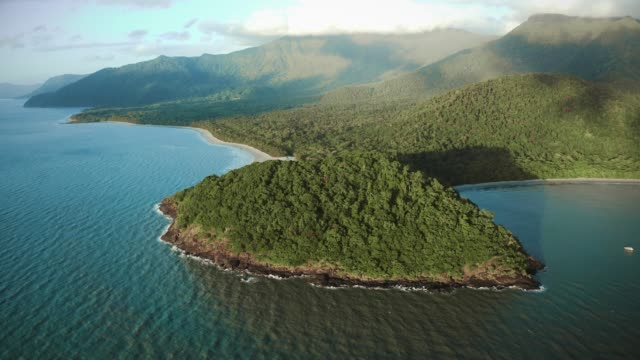 aerial view of daintree rainforest - rainforest stock videos & royalty-free footage