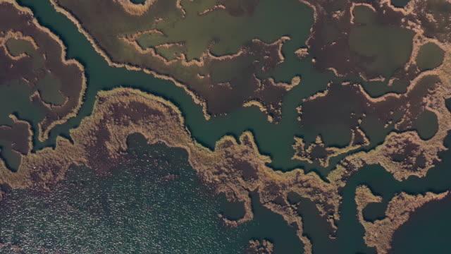 vídeos y material grabado en eventos de stock de vista aérea del delta de dalyan y la playa de iztuzu, mugla - paisaje espectacular