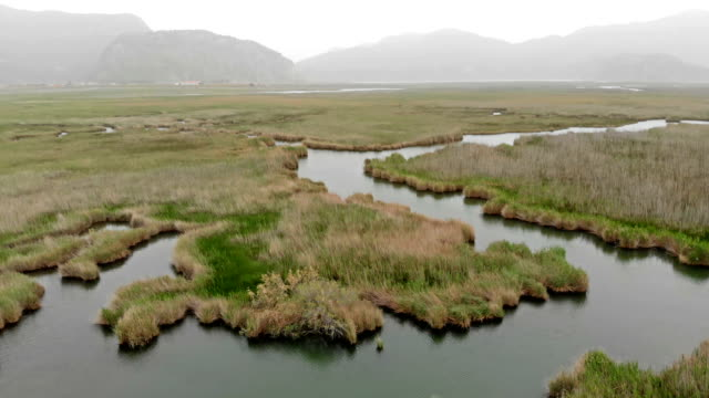 aerial view of dalyan in turkey - dalyan stock videos and b-roll footage
