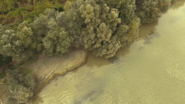 aerial view of danube river bend in lower serbia stock video - river bend land feature stock videos & royalty-free footage