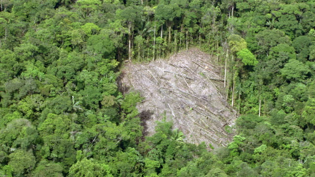 vidéos et rushes de aerial view of deforestation in jungle, colombia - colombie