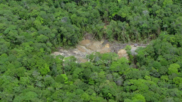 aerial view of deforestation in remote colombian jungle - medellin colombia stock videos & royalty-free footage