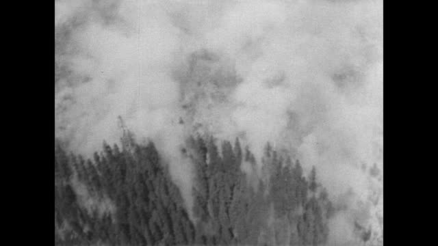 / aerial view of devastating wild fire south east of Seattle / smoke billows through evergreen trees / trees burning / firefighters assess the fire...