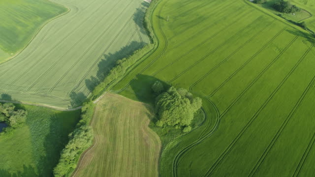 vidéos et rushes de aerial view of dirt road (tire track) in rural landscape with trees, agricultural fields and meadow. saale-orla-kreis, thuringia, germany, europe. - patchwork landscape