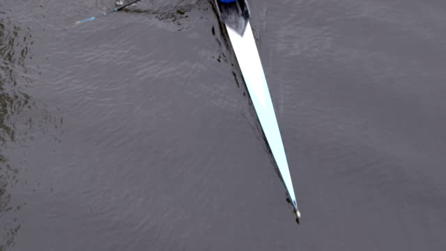 aerial view of double rower - oar stock videos & royalty-free footage