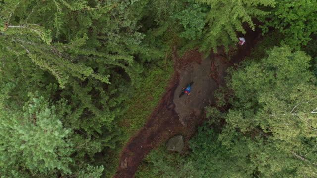 vidéos et rushes de vue aérienne des cavaliers de descente avec des vtt dans une forêt de pins - roue