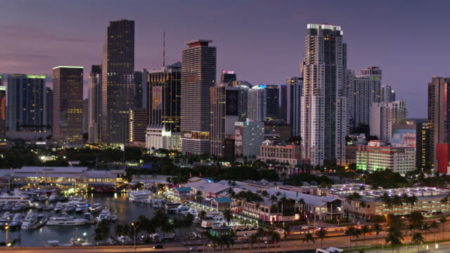 aerial view of downtown miami at dawn - miami stock videos & royalty-free footage