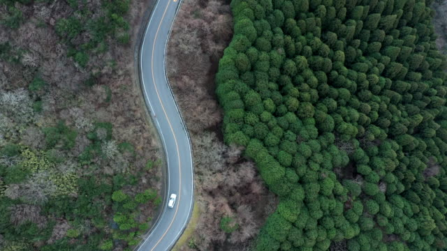 aerial view of driveway in the forest - 郊外点の映像素材/bロール