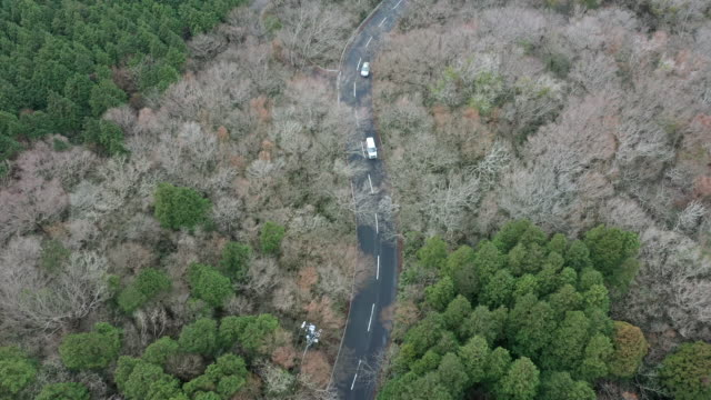 aerial view of driveway in the forest - season stock videos & royalty-free footage