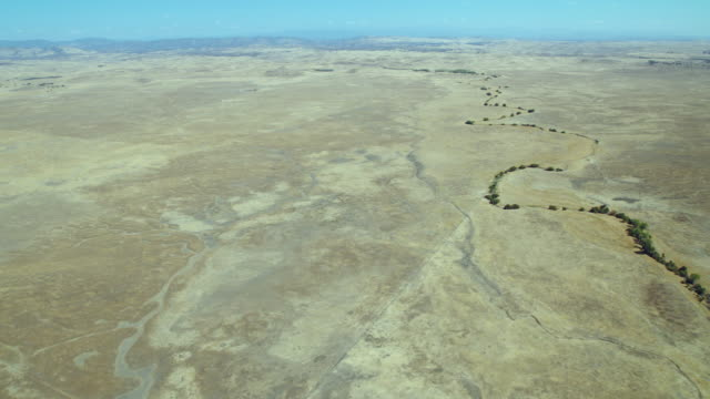 aerial view of dry arroyos carved into a vast expanse of grassland in the san joaquin valley in northern california. - drought stock videos & royalty-free footage