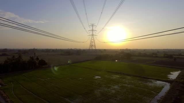 Vista aérea de pilón de la electricidad y las líneas en el campo del arroz con hermosa puesta de sol.