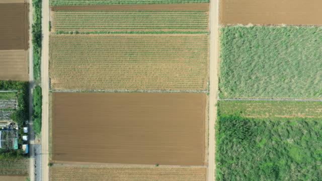 豊富な広大なフィールドの空撮 - 田畑点の映像素材/bロール