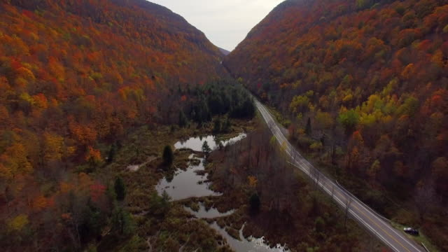 aerial view of fall foliage following road through valley in catskill mountains in upstate ny - contea di ulster stato di new york video stock e b–roll