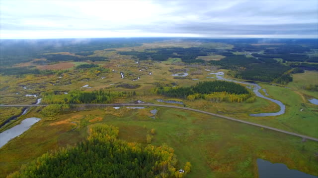 vidéos et rushes de aerial view of far east wasteland at autumn,russia. - étendue sauvage état sauvage