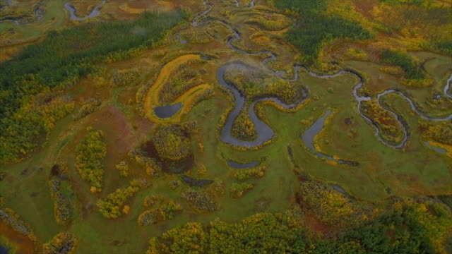 vidéos et rushes de aerial view of far east wasteland at autumn,russia. - étendue sauvage scène non urbaine