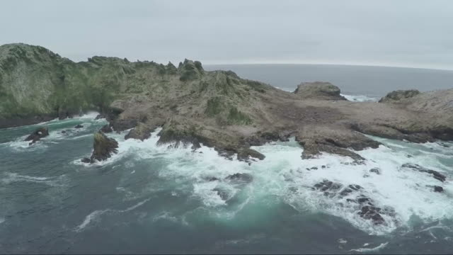aerial view of farallon island - island stock videos & royalty-free footage