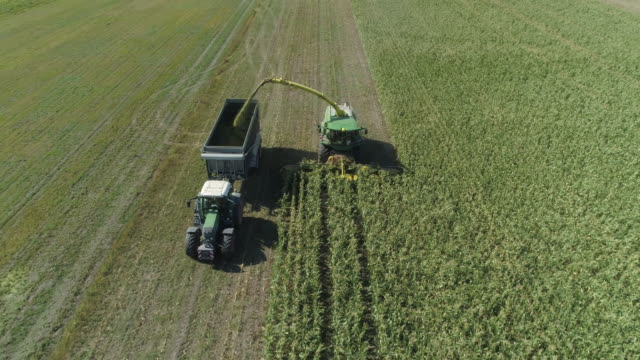 aerial view of farm machines harvesting corn with forage harvester. franconia, bavaria, germany. - 農林水産関係の職業点の映像素材/bロール