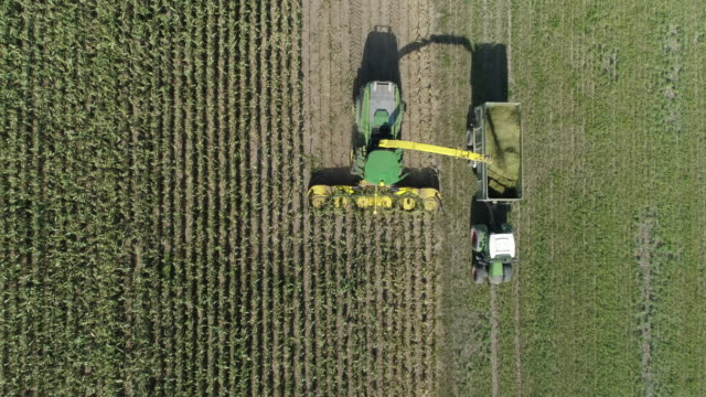 stockvideo's en b-roll-footage met aerial view of farm machines harvesting corn with forage harvester. franconia, bavaria, germany. - monocultuur