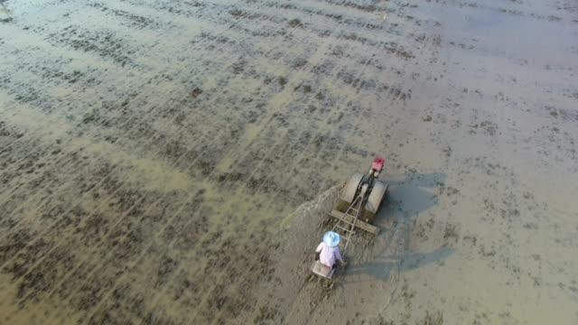 aerial view of farmer in tractor preparing land for sowing - harrow stock videos & royalty-free footage