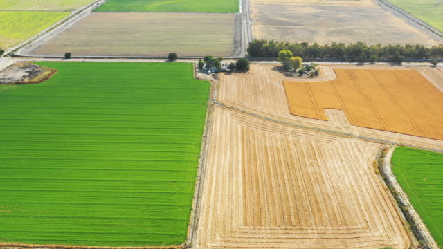 aerial view of farmland in california - irrigation equipment stock videos & royalty-free footage