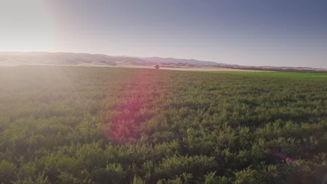 vídeos de stock, filmes e b-roll de vista aérea de 4k de terras agrícolas no vale de san joaquin - fresno