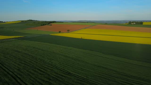Aerial view of farmland near Fisch, Saargau, Canton Trier-Saarburg, Rhineland-Palatinate, Germany