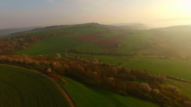 Aerial view of farmland on Saargau at sunrise, Kirf, Rhineland-Palatinate, Germany