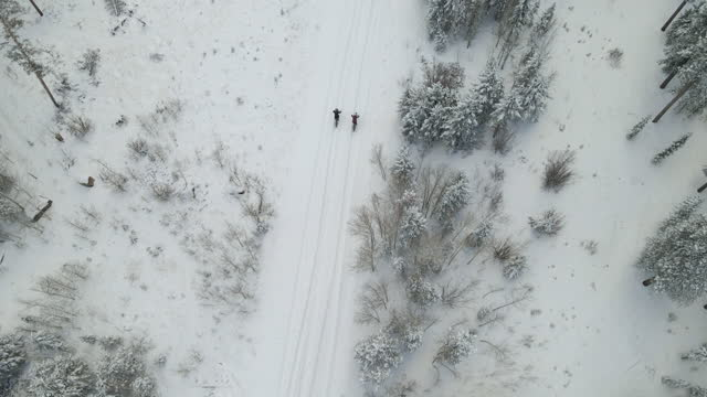 aerial view of female friends riding fat tire bikes on snow covered forest road on winter afternoon - mountain biking stock videos & royalty-free footage