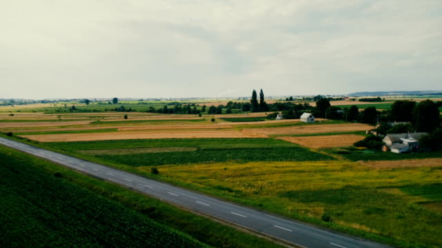 Aerial view of fields in countryside