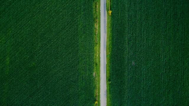 Luchtfoto van velden op platteland