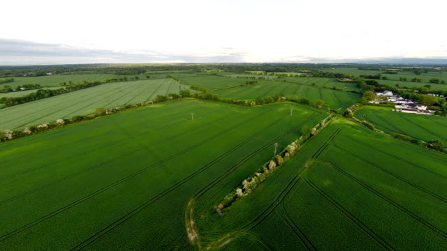 Aerial view of fields, Ireland