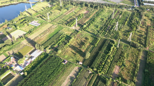 aerial view of fields - liyao xie stock videos & royalty-free footage