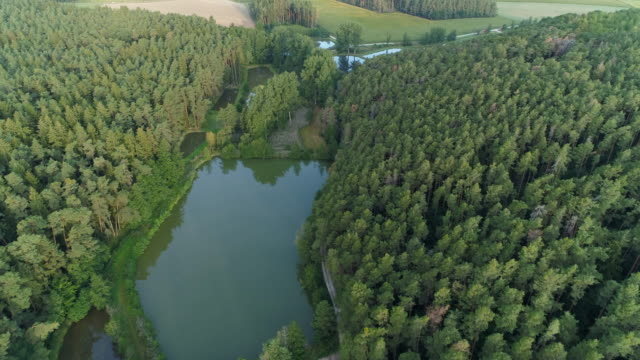 aerial view of fish ponds in forest, middle franconia near the town höchstadt an der aisch. - teich stock-videos und b-roll-filmmaterial