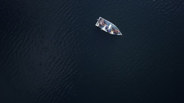 aerial view of fishermans fishing from a boat on lake - recreational boat stock videos & royalty-free footage