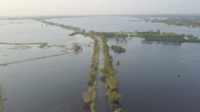 aerial view of flood in ayutthaya province,thailand - monsoon stock videos & royalty-free footage