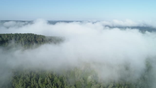 aerial view of fog at morning in forest. franconia, bavaria, germany, europe. - rätsel stock-videos und b-roll-filmmaterial