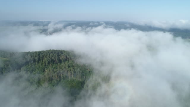 aerial view of fog at morning in forest. franconia, bavaria, germany, europe. - 天国点の映像素材/bロール