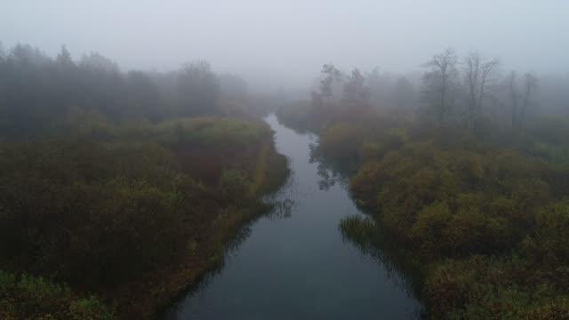 vidéos et rushes de vue aérienne du paysage fluvial brumeux - marécage
